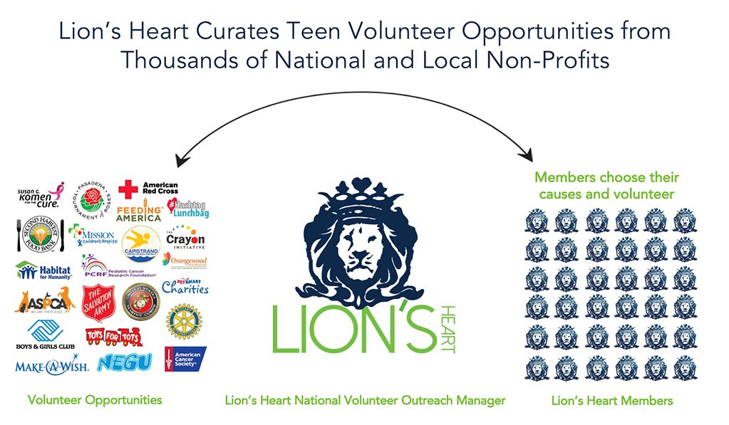 Teen volunteer opportunities non profits.