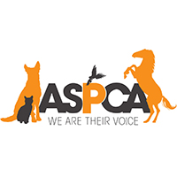 ASPCA, animal charities